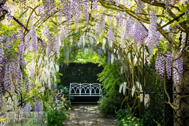 TW-Waterperry May 2015-ML015_003